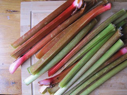 Erway-rhubarb4